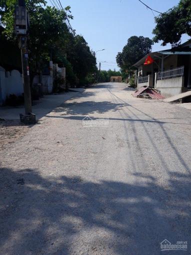 Mặt tiền Lý Nam Đế giá siêu đầu tư khu phố 2, P4, Đông Hà giá chỉ 500 triệu ảnh 0