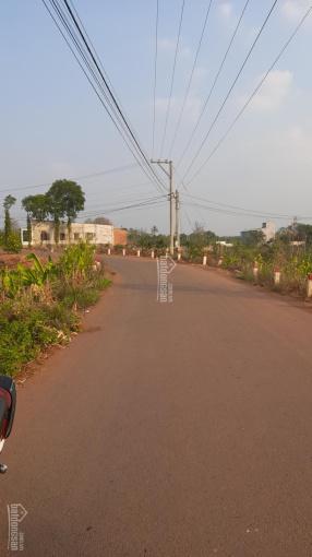 Bán đất mặt tiền đường nhựa xã Cây Gáo, huyện Trảng Bom ảnh 0