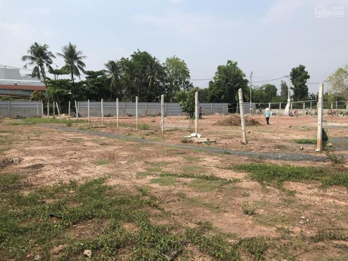 Cho thuê lô đất làm kinh doanh DT 3000m2 - An Phú Đông - Quận 12 ảnh 0
