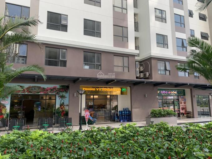 Căn hộ sân vườn giá chỉ 29tr/m2 nằm ngay mặt tiền đường Phạm Thế Hiển, quận 8 ảnh 0