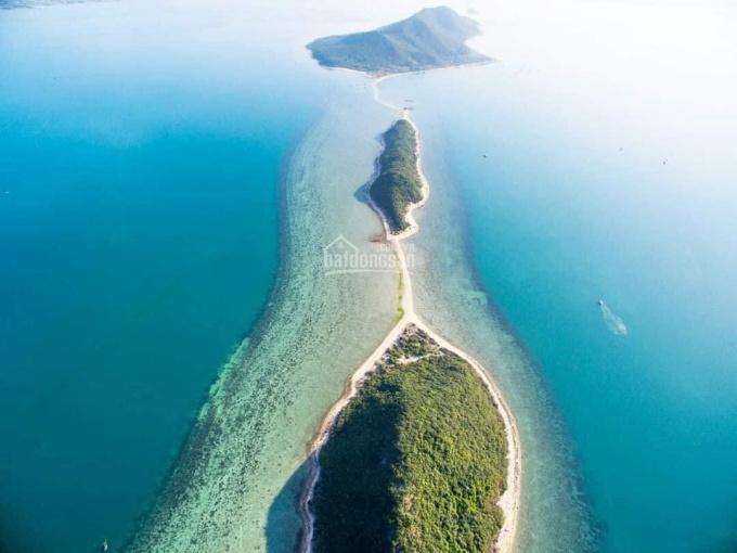 Chính chủ bán đất mặt biển giá chỉ đất mặt biển giá chỉ 4tr/m2 tại đảo Điệp Sơn KKT Bắc Vân Phong ảnh 0