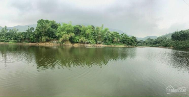 Chuyển nhượng 3200m2 đất TC view bám hồ 100m tại Hoà Sơn - Lương Sơn - Hoà Bình giá chỉ 2.xtr/m2 ảnh 0