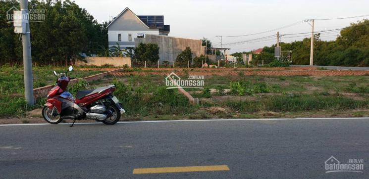 Bán đất TC sổ sẵn MTĐ DX 081 đối diện nông trang Đồng Dao, Định Hoà. 80m2, 0901813419 Yến Nhi ảnh 0