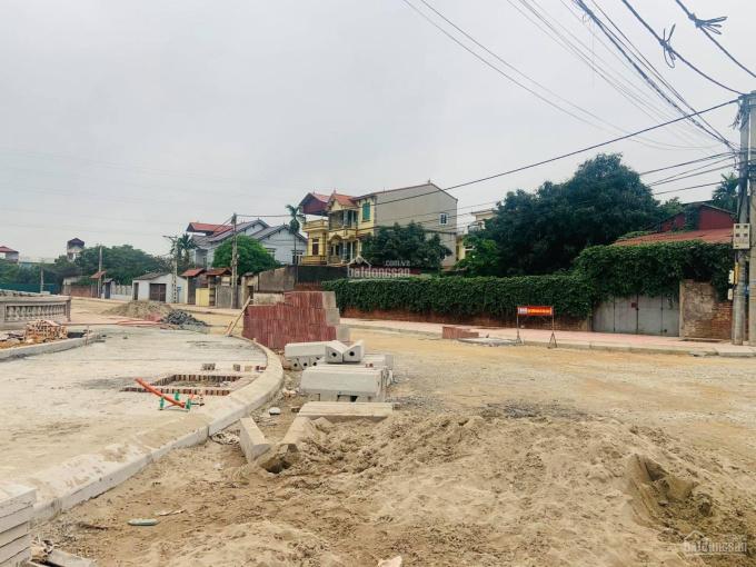 Bán đất thôn Đoài, xã Nam Hồng, Lô góc ô tô tải, chia lô 143m2, mặt tiền 15m, giá 4.0 tỷ Đông Anh ảnh 0