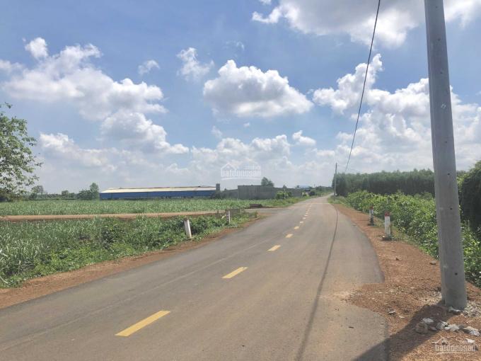 Bán Lô đất mặt tiền đường nhựa chính Quốc Chí, Đông Hoà, diện tích 1000m2 sổ riêng, giá 1,55 tỷ ảnh 0