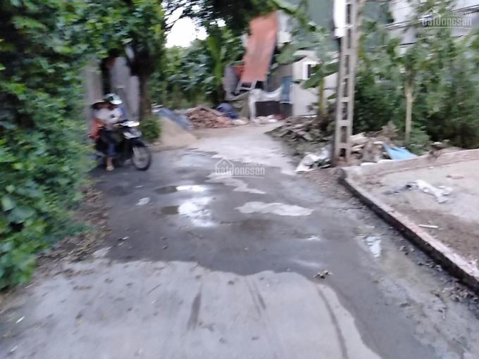 Bán mảnh đất 50m2, Đông Mỹ, Thanh Trì, mặt tiền 5m, giá 1tỷ35 ảnh 0