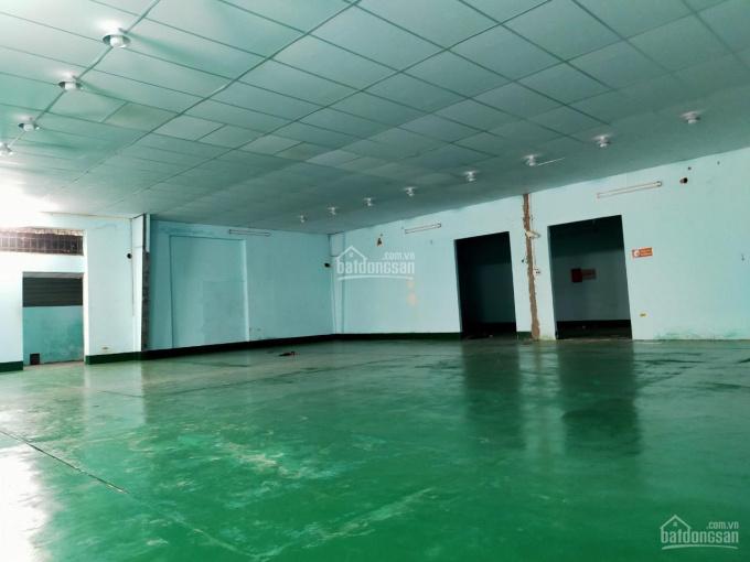 Cho thuê kho xưởng 750m2 nền Expoxy mới 100%, container vào ok. đường Thoại Ngọc Hầu, Tân Phú ảnh 0