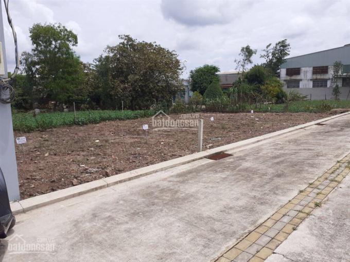 Cần bán gấp lô đất ngay TTTM Viva City, SHR, giá 700tr, LH: 0934.076.823 ảnh 0