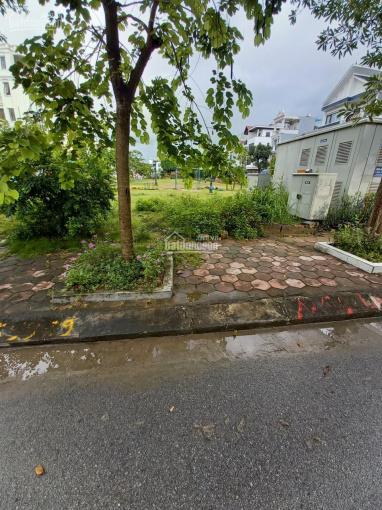 Bán lô đất hướng ĐN duy nhất DT 40m2 tại tái định cư Xi Măng chợ Hoa quả phường Sở Dầu L 0914060830 ảnh 0