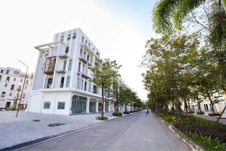 Gia đình không có nhu cầu SD cần bán gấp shophouse 75m2, biệt thự 160m2 và BT 200 giá rẻ nhất dự án ảnh 0