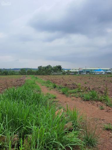 500m2 xã Sông Trầu, gần Thác Đá Hàn đất đẹp, LH: 0896880838 ảnh 0