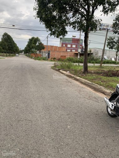 Bán lô đất đường 91 tái định cư Phú Chánh Phú Tân 100m2 giá đầu tư, LH 0968930839 ảnh 0