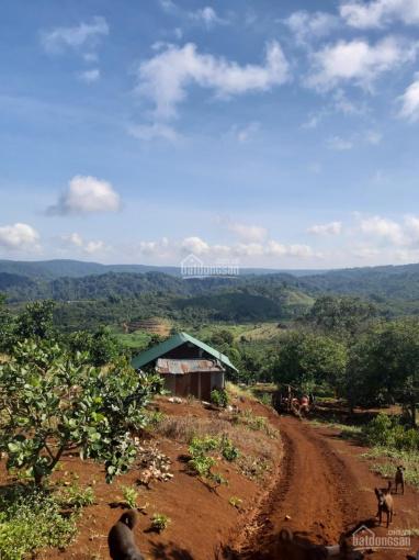 Bán đất tại Xã Đồng Nai Thượng, từ 600 triệu đến 5 tỷ ảnh 0