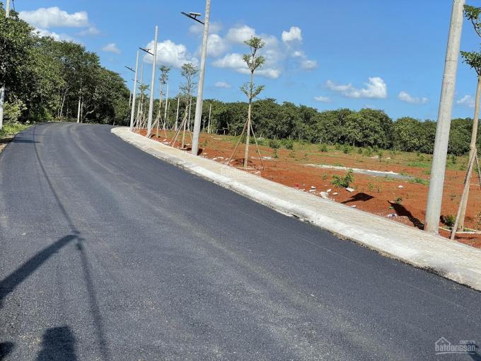 Đất 2 mặt tiền Trần Phú 15m P. Hắc Dịch ngay khu công nghệ cao 450Ha giai đoạn đầu, LH 0938973559 ảnh 0