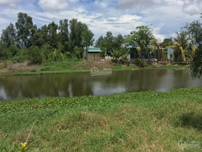 Nhà vườn ven sông đẹp nhất tại TT Cần Giuộc, 1090m2, có 318m2 thổ, xem là mê, LH 0889 146 668 ảnh 0