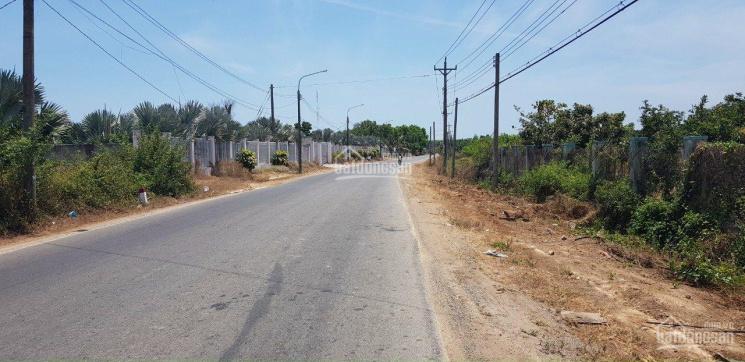 300m2 đất sẵn 100m2 đất ở hợp làm nhà vườn nhỏ xinh tại Phước Hải - Huyện Đất Đỏ - Bà Rịa Vũng Tàu ảnh 0
