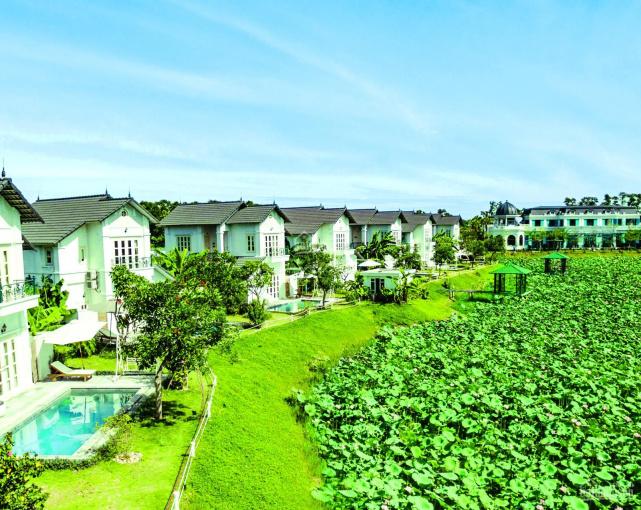 Biệt thự khu nghỉ dưỡng ven đô Vườn Vua Phú Thọ tận hưởng nguồn khoáng nóng vô tận chỉ 23tr/m2 ảnh 0