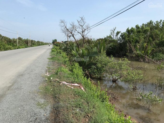 Bán đất 20 công thị xã Duyên Hải, 2 mặt tiền, mặt tiền lộ lớn 200m, lộ nhỏ mặt tiền hơn 150m ảnh 0