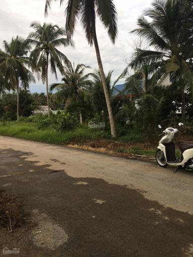 Bán đất 2 mặt tiền, Ấp Phong Thuận, xã Tân Mỹ Chánh, TP Mỹ Tho ảnh 0
