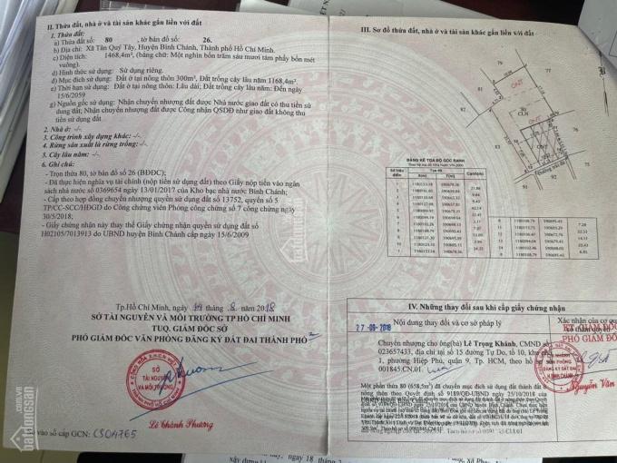 Bán đất xây biệt thự, nhà vườn Xã Tân Quý Tây, Bình Chánh, TP HCMa ảnh 0