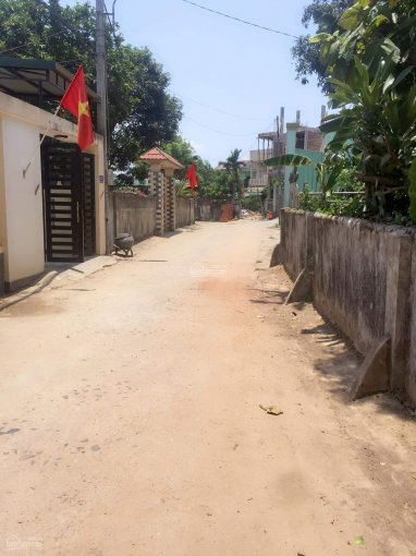Bán gấp đất phường 5, mặt tiền Nguyễn Phúc Nguyên, giá cực rẻ, 0367 907 267 ảnh 0