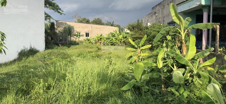 Bán đất Đức Hoà xã Mỹ Hạnh Nam Đường Tỉnh Lộ 824 vào 200m DT 200m2, giá 1 tỷ 350. LH: 0918551010 ảnh 0