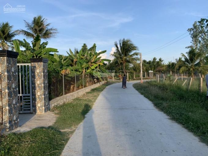 Cơ hội cho các nhà đầu tư đất giá rẻ Ninh Quang ảnh 0