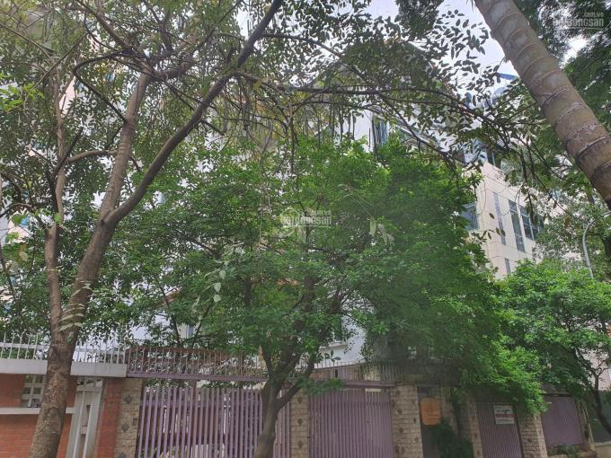 Bán biệt thự Nguyễn Văn Lộc - Hà Đông: 27 Tỷ 0965098339 ảnh 0