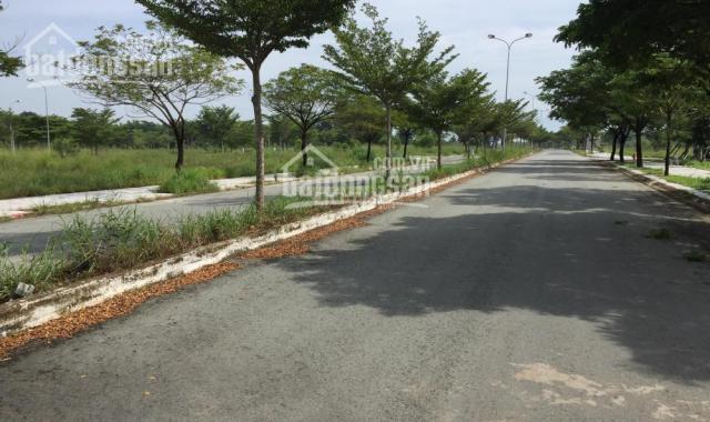 Bán đất dự án Thung Lũng Xanh, Long Thành ĐN giá rẻ nhất thị trường ảnh 0