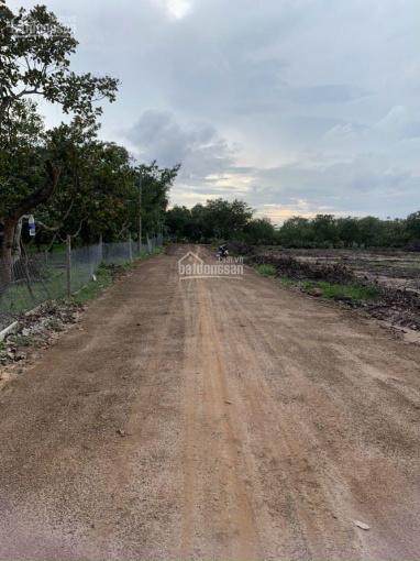 Cần bán 5000m2 đất xã Xuân Tâm, huyện Xuân Lộc, Đồng Nai mặt tiền sắp đổ dài hơn 50m (đã đóng tiền) ảnh 0