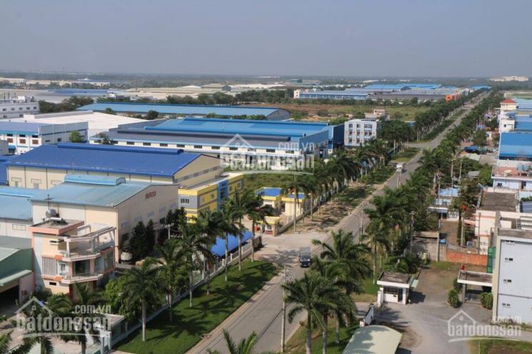 Bán đất nền trong KCN Tân Đô, giá tốt mùa dịch, vị trí gần hồ, gần KCN có hết ảnh 0