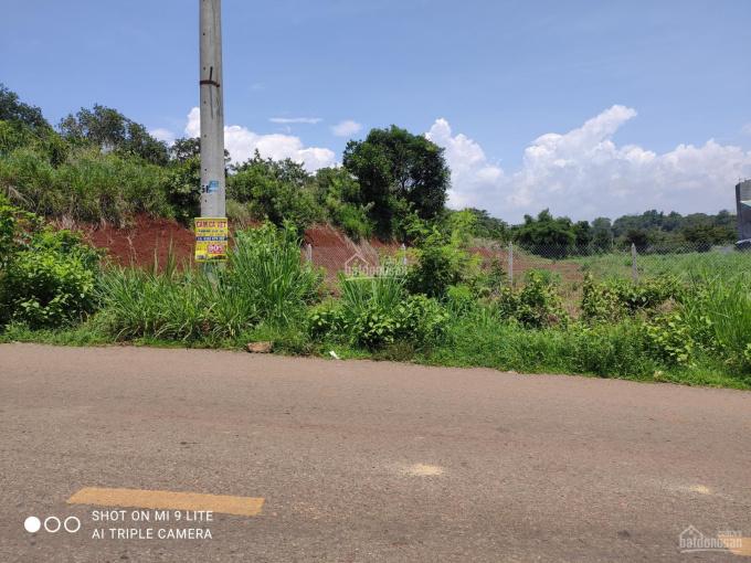 Bán đất view đồi, mặt tiền đường nhựa, thổ cư đầy đủ ảnh 0