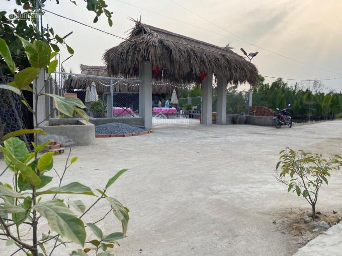Bán đất mặt sông Hiệp Phước, Nhà Bè nghỉ dưỡng tránh dịch có nhà sẵn 308m2 ảnh 0