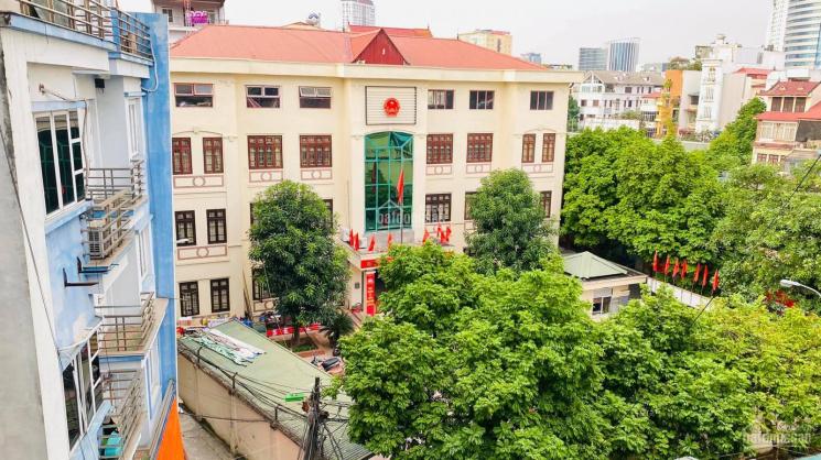 Bán gấp nhà phố Vũ Ngọc Phan 112m2, ô tô vào nhà, sân vườn siêu thoáng trước sau, về ở luôn ảnh 0