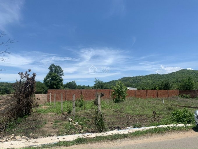 Bán đất 11x20(100m2 thổ cư), ĐN, khu dân cư, xã Tam Phước_Long Điền_BRVT. ảnh 0
