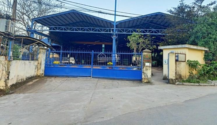 Cho thuê nhà xưởng K185 Lê Trọng Tấn, P. Hòa Phát, Đà Nẵng, có đầy đủ văn phòng, nhà ăn: 0914113116 ảnh 0