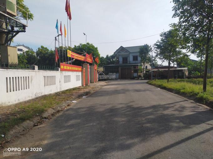 13 triệu/m2! Đất xây biệt thự - Thành Thái Thịnh - k15 Bến Thủy - 257.2m2 - ngang 10.5m ảnh 0