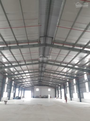 Cho thuê kho xưởng đường Trần Đại Nghĩa, Bình Tân. Diện tích: 18.000m2 có ngăn nhỏ từ 500m2 ảnh 0