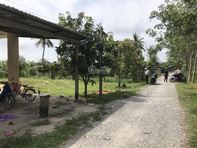 Khơi nguồn cao tốc HCM - Mộc Bài, Gò Dầu, Tây Ninh. 365 triệu/ thổ cư. LH 0989.65.02.79 ảnh 0
