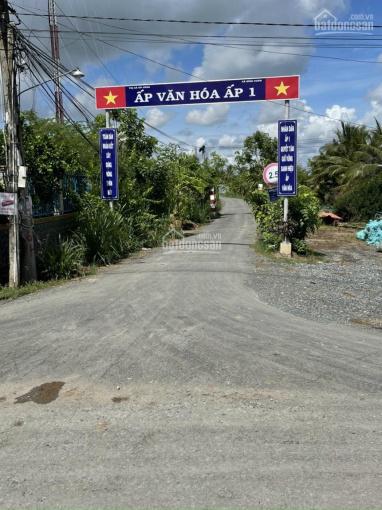 Bán đất thổ cư Ấp 1, Bình Xuân, thị xã Gò Công 237m2 đường ô tô 3m tới đất ảnh 0