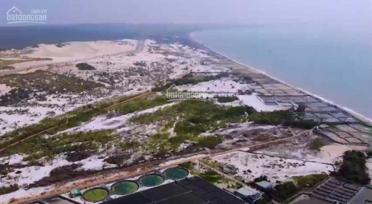 1,1ha đất đường Bàu Trắng - Hòa Phú, ngay đồi cát Bàu Trắng, chỉ 800 nghìn/m2 ảnh 0