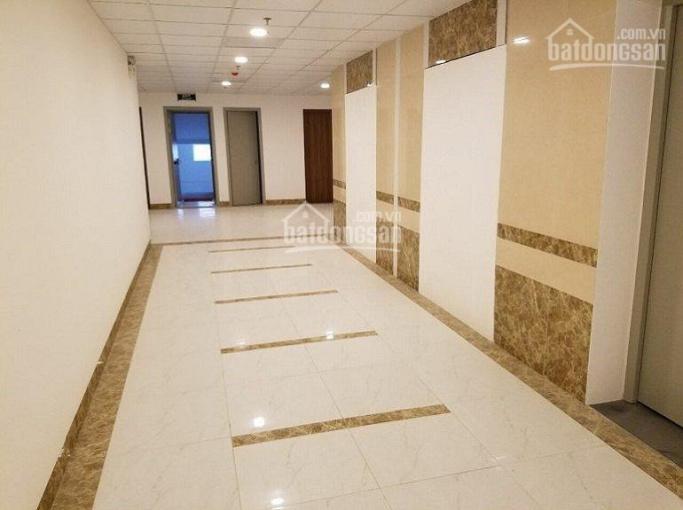 Mở bán căn hộ 2PN, 3PN toà mới N01B, chung cư K35 Tân Mai ảnh 0