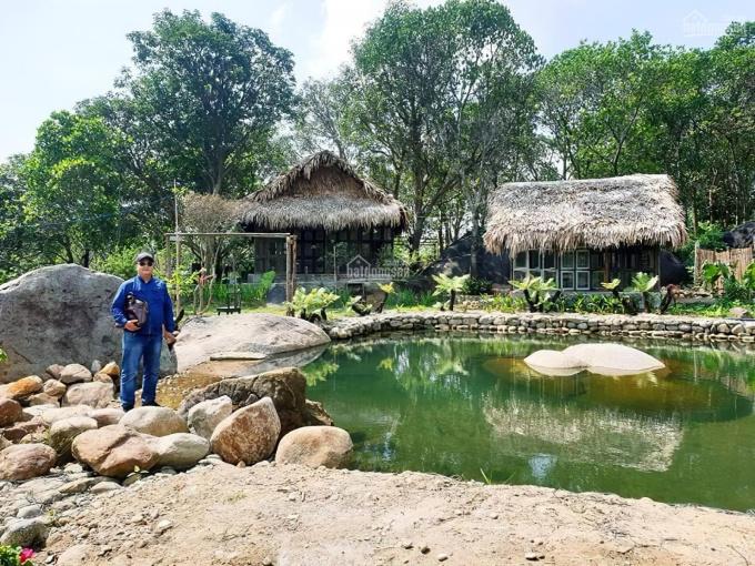 Đất làm nhà vườn ven Sài Gòn, khu du lịch nghỉ dưỡng gần sông Đồng Nai, chỉ 499 triệu/1000m2 ảnh 0