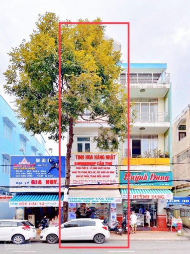 Cho thuê nhà 1 trệt, 3 lầu mặt tiền đường Nguyễn Thái Học (cạnh bên Bến Ninh Kiều) ảnh 0