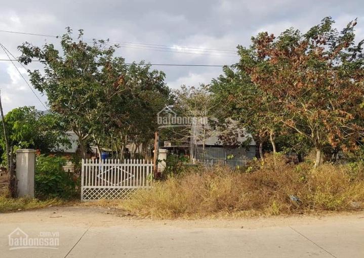 Chính chủ bán nhà trên lô đất hơn 1000m2 tại H. Krông Pa, tỉnh Gia Lai, giá 390 triệu ảnh 0