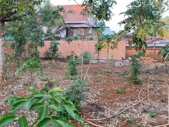 Chính chủ bán đất tại Cư Mgar, tỉnh Đắk Lắk ảnh 0