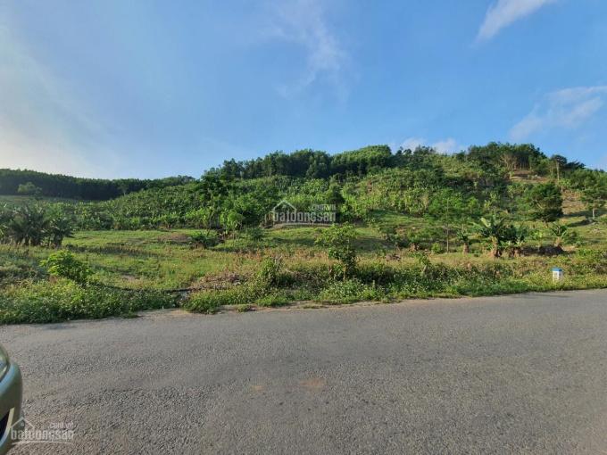 Cần bán 7ha đất có sổ gồm 14 lô, có 500m mặt đường. Giá 19 tỷ thu về (giá hiện trạng là 28 tỷ) ảnh 0
