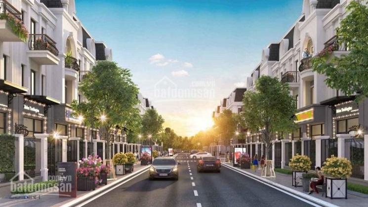 Tiền Hải Center City - Đầu tư với giá ưu đãi đợt 1 - Chiết khấu tới 8%, hỗ trợ vay ngân hàng LS 0% ảnh 0