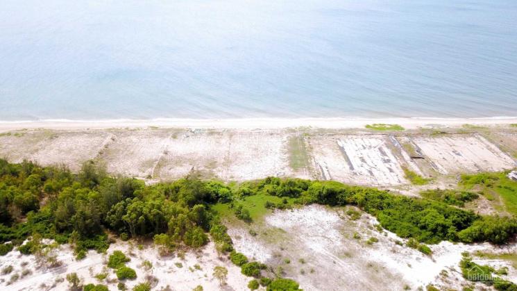 Đất biển TMDV xã Hòa Thắng 2220m2 giá chỉ từ 1tr4/m2, sổ hồng có sẵn, cách biển 200m ảnh 0