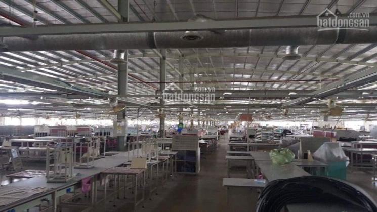 Chuyển nhượng nhà máy, xưởng sản xuất 40,000m2 KCN Tân Hương, Châu thành, Tiền Giang ảnh 0